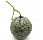 Искусственная канталупа для фотосъемки и декора, муляж фруктов 16 см