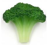 Искусственная зеленая цветная капуста для фотосъемки и декора, муляж овощей 5,8 см